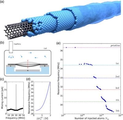 Pel·lícules superfluides d'heli creixen en nanotubs de carboni
