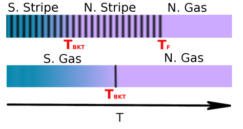 Schematic representation of the thermal phase transition that occurs in the  gas and stripe phases of the bosonic dipolar system