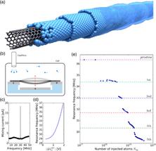 La mecánica cuántica explica como películas superfluidas de helio crecen en nanotubos de carbono