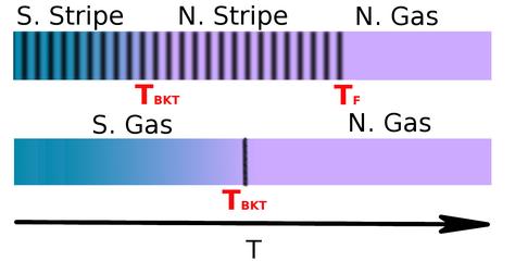 Representación esquemática de las transiciones de fase térmicas observadas en la fase stripe y gas del sistema dipolar bosónico en dos dimensiones.